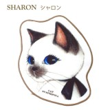 小毛巾 - 小白貓